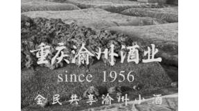 重庆渝州酒业有限公司